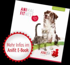 Anifit E-Book